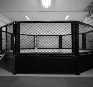 Vapaaottelussa ottelut käydään vapaaottelukehässä tai kahdeksankulmaisessa häkissä. GB:llä on oma häkki harjoittelua varten.
